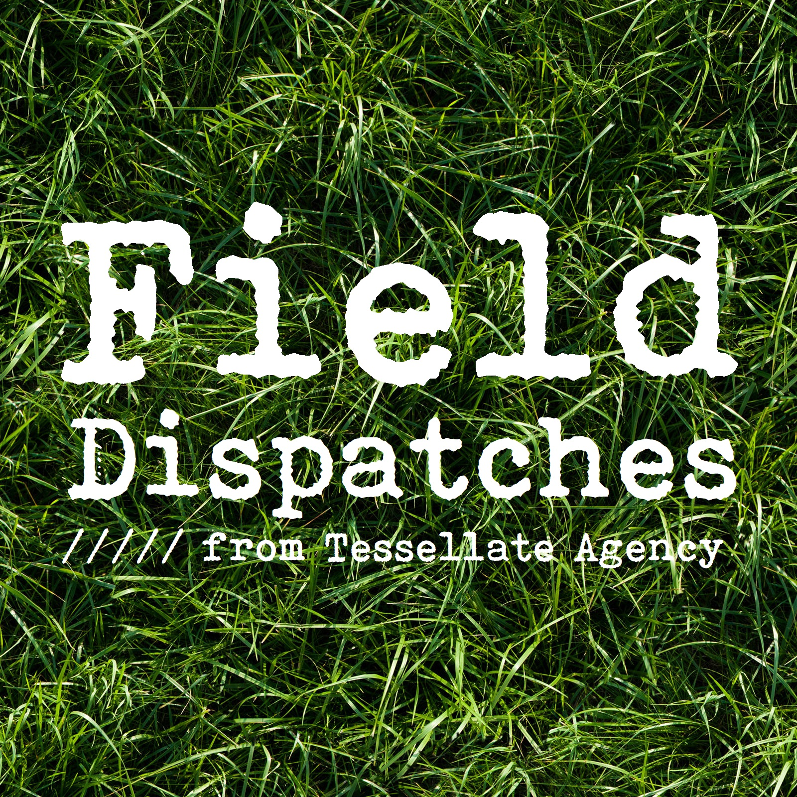 Field Dispatches Logo Thumbnail 1600x PX.jpg